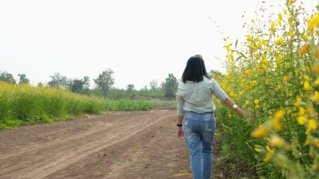 stockvideo's en b-roll-footage met achterkant vrouw wandelen in gele bloem veld in zonnige dag - menselijke rug
