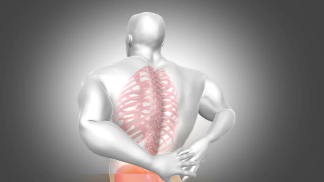 Back Pain Animation