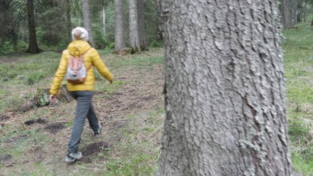 stockvideo's en b-roll-footage met terug naar de natuur. kraan schot van vrouw solo reiziger die in de aard loopt. genieten buiten in de bossen op een zonnige dag na de covid-19 pandemie einde. - verwonderingsdrang