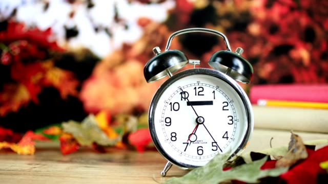 back to school with alarm clock in autumn season. - september stock videos and b-roll footage