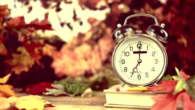 vídeos y material grabado en eventos de stock de regreso a la escuela con reloj de alarma en la estación del otoño. - table top view
