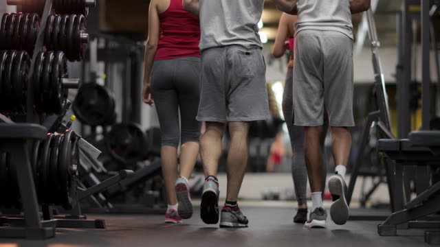 Back view of athletic people walking in a gym.