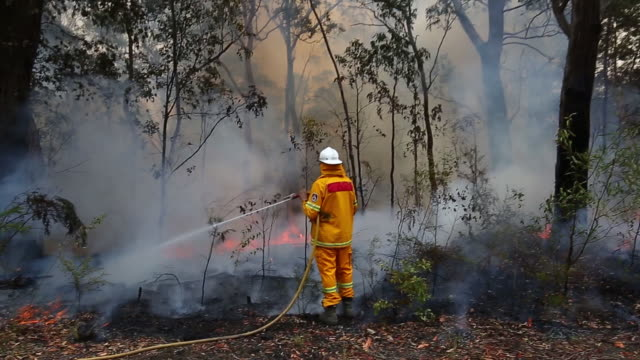 "vidéos et rushes de backburning operations near the town of kulnura new south wales australia on thursday december 12 2019 the smoke blanketing sydney is a ""public... - australie"