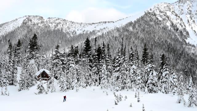 Esquiador de travesía ascendente a través de los árboles