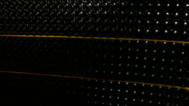 background - bottles of champagne in the basement of the winery