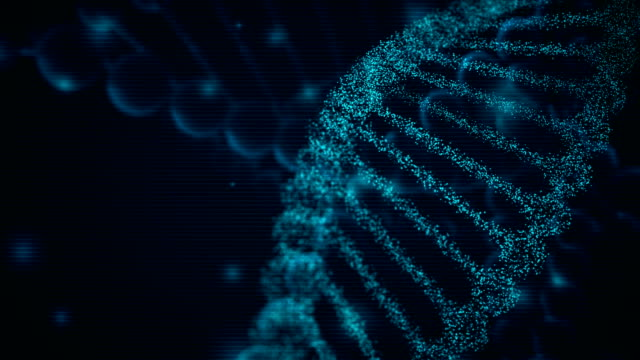 4k dna background - loopable - chromosome stock videos and b-roll footage