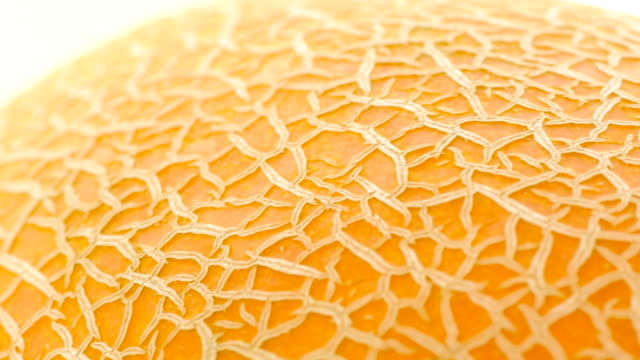 background of melon surface, close up - spinning point of view stock videos & royalty-free footage