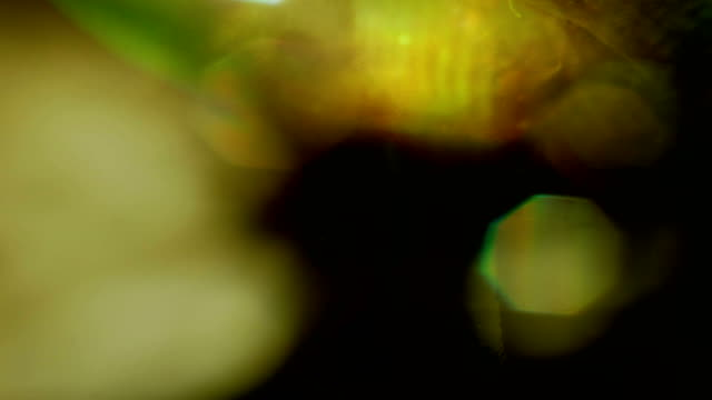 vj dj background wall 4k loop - film camera stock videos & royalty-free footage