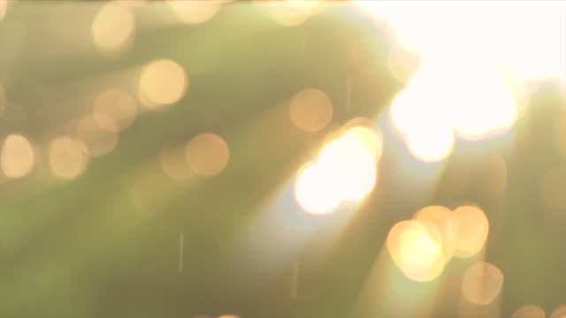 background with beautiful golden bokeh circles and rain fall light ray slow motion loop able - raindrop stock videos & royalty-free footage