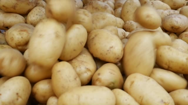background with potatoes dropping - raw potato stock videos & royalty-free footage