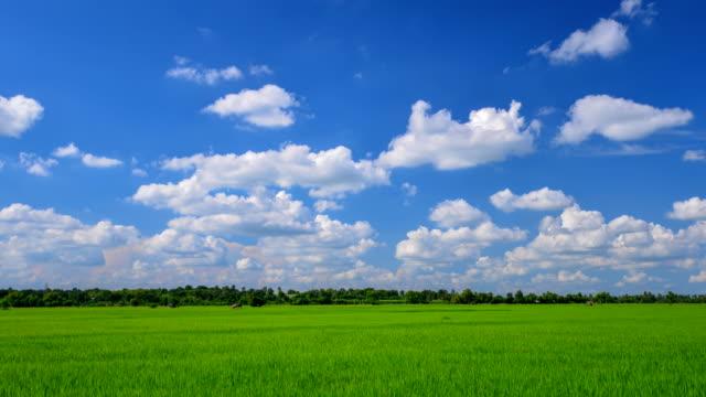背景の美しいファーム上に雲を移動時間の経過。 - 麦わら帽子点の映像素材/bロール