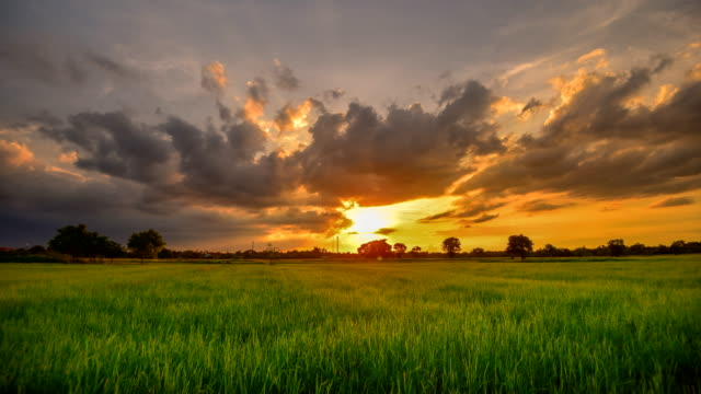 backgrounds sunset at cloud time lapse - field stock videos & royalty-free footage