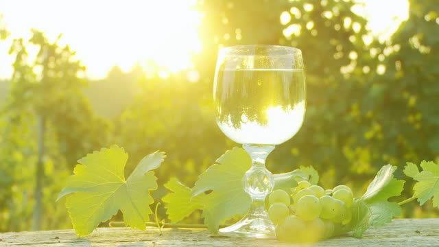 hd dolly: backlit glass of wine in vineyard - white wine stock videos & royalty-free footage