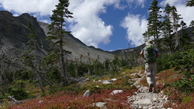 Backpacker man hiking Indian Peaks Wilderness Buchanan Pass trail Colorado