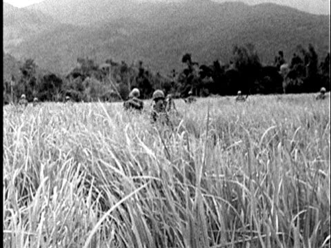 Backs of Marines walking through field of tall grass towards Vietnamese jungle / AUDIO