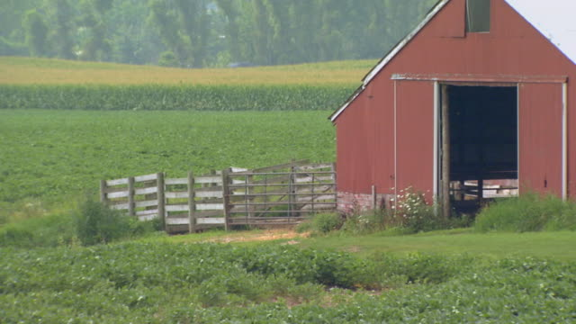 backside of a barn with fields and pasture land all around - land vehicle stock videos & royalty-free footage