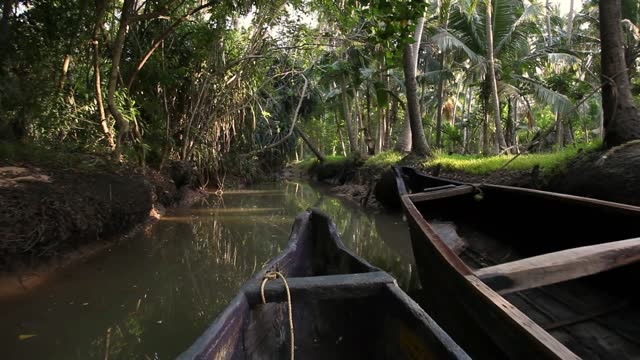 backwater tour on river poovar in india - backwater stock videos & royalty-free footage