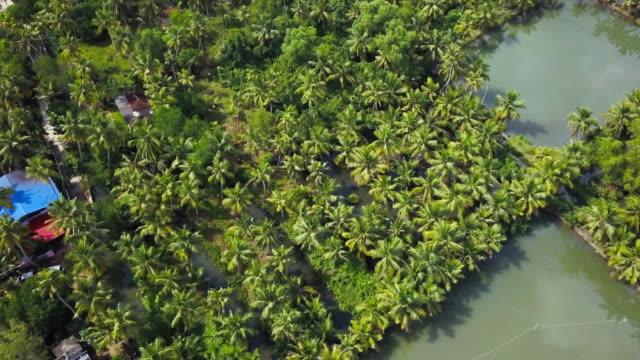 backwaters monroe island, kerala, india - backwater stock videos & royalty-free footage