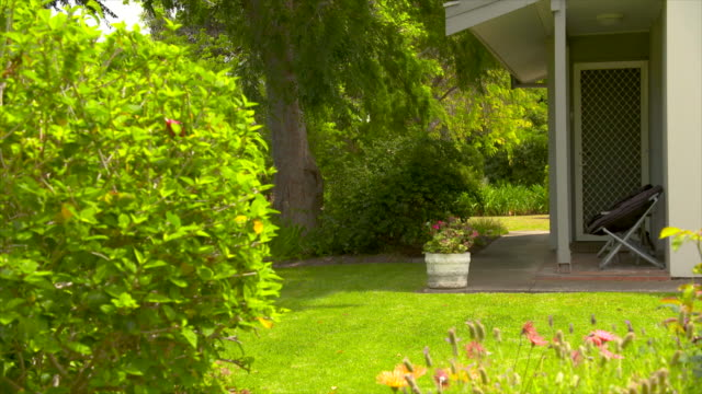backyard lawn of a suburban house - landscaped stock videos & royalty-free footage