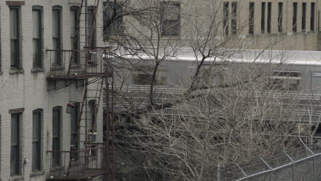 backyard nyc mta - 葉のない木点の映像素材/bロール
