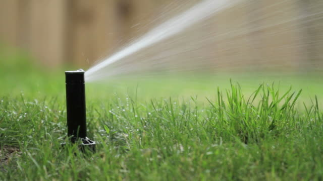 backyard irrigatore - prato rasato video stock e b–roll