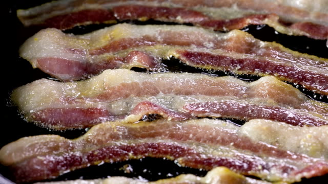 bacon - bacon stock videos and b-roll footage