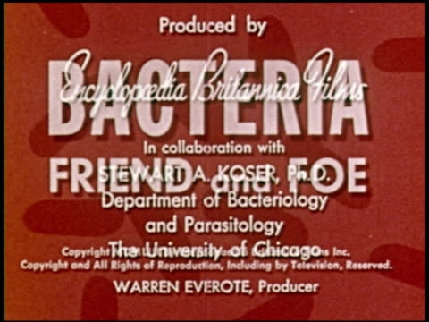 bacteria: friend and foe - 1 of 10 - see other clips from this shoot 2319 stock videos & royalty-free footage