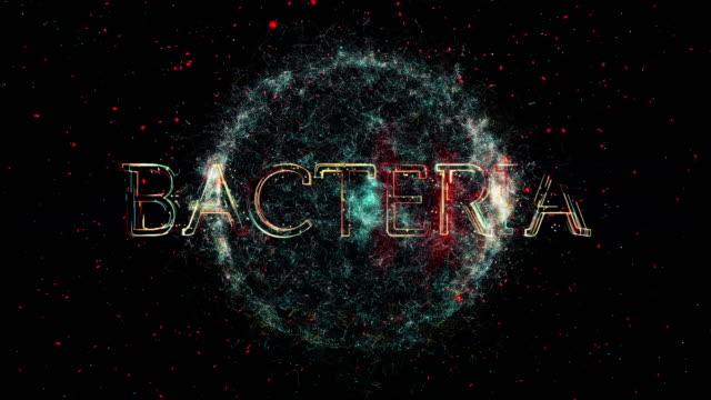 bacteria title animation - escherichia coli video stock e b–roll