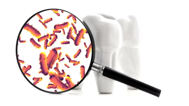 bacterias and viruses around tooth - dental hygiene stock videos & royalty-free footage