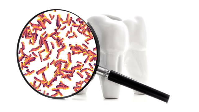 Bacterias and viruses around tooth