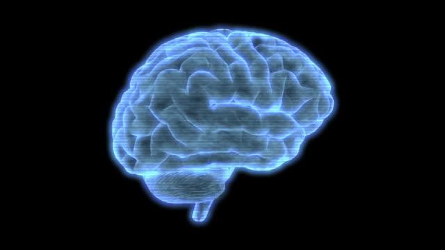 vidéos et rushes de bad reception hud element of a holographic human brain rotating - cerveau