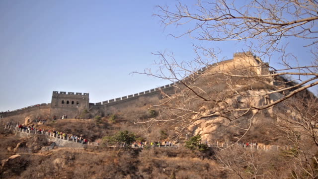 badaling great wall of china behind tree in winter - badaling great wall stock videos & royalty-free footage