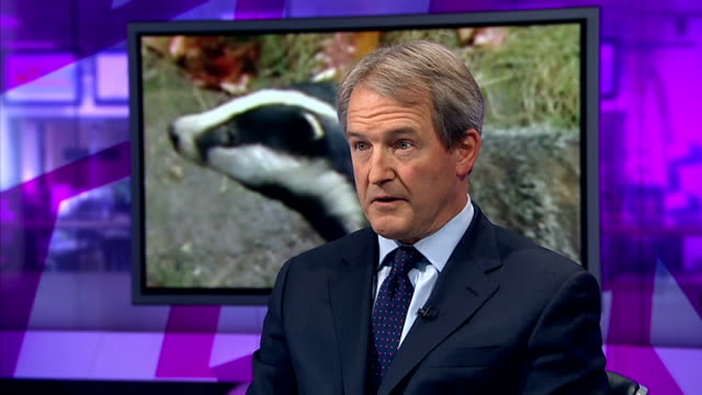 badger cull could be extended by three weeks to reach targets england london gir int owen paterson mp interview sot - オーウェン・パターソン点の映像素材/bロール