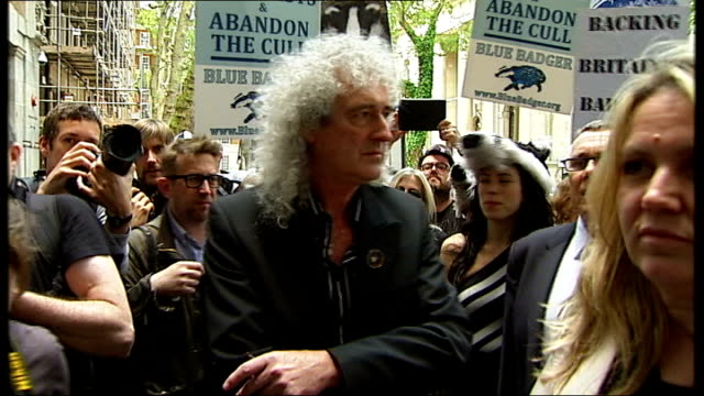 vídeos de stock, filmes e b-roll de london westminster ext protesters towards with placards 'cows against the cull vaccinate' and 'back off badgers kill the cull' with person dressed in... - stop placa em inglês