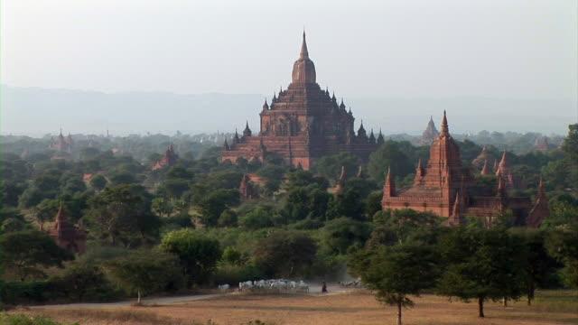 bagan ruins in myanmar - 羊の群点の映像素材/bロール