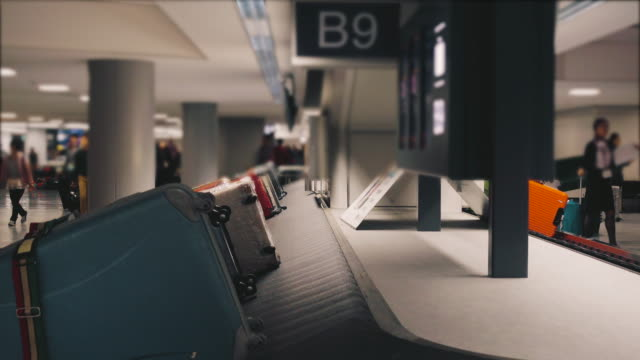 baggage belt - belt stock videos and b-roll footage