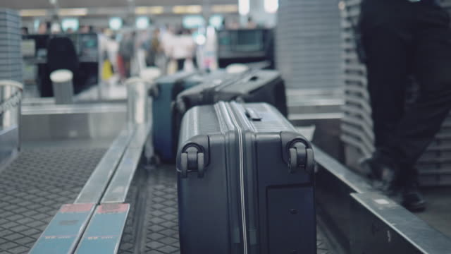baggage check-in - airline check in attendant stock videos and b-roll footage