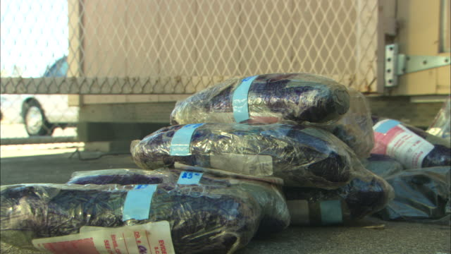 bags of heroin lie in a pile in a warehouse. - heroin stock videos & royalty-free footage