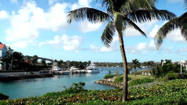 bahamas marina - nassau stock videos & royalty-free footage