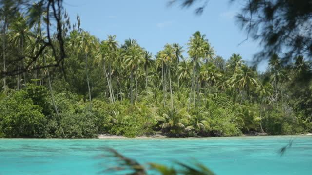 baie à tahiti - taiti点の映像素材/bロール