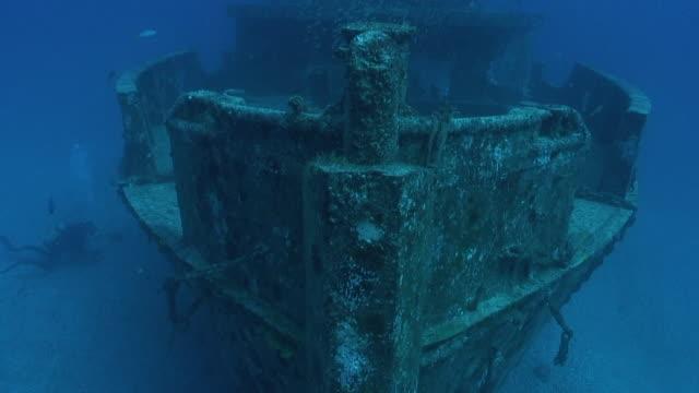 stockvideo's en b-roll-footage met baitfish - scheepswrak