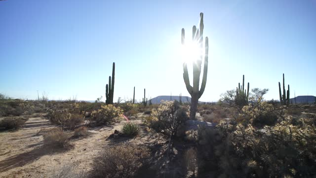 baja desert mexico catavina desert - valley stock videos & royalty-free footage