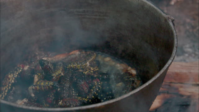 Baka pygmy people in Africa making boiled fat insects food