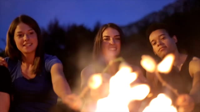 baking marshmallow on campfire with friends - picnic stock videos and b-roll footage