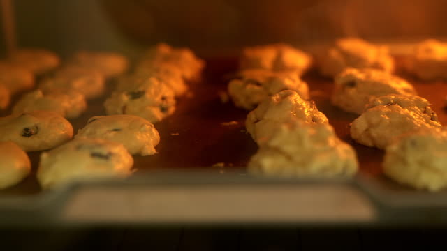 baking tray with delicious oatmeal cookies in oven - baking tray stock videos & royalty-free footage