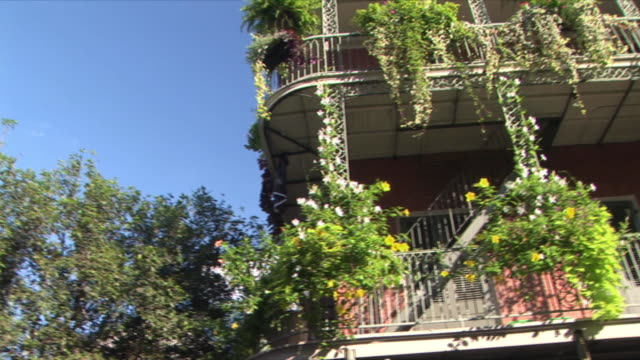 ms la pan balcony with plants and flowers, french quarter, new orleans, louisiana, usa - pot plant stock videos and b-roll footage