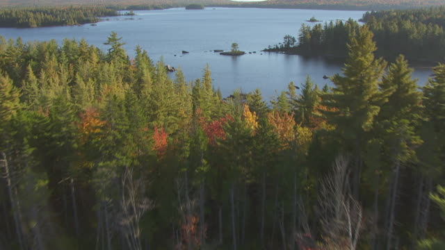 WS AERIAL POV Bald Mountain Pond and Fall Forest with treetops, mountain in background / Somerset County, Maine, United States