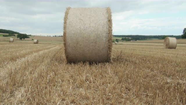 ws bale of straw on grass field / serrig, rhineland-palatinate, germany - bale stock videos & royalty-free footage