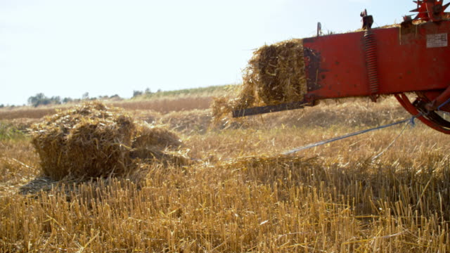 ws baler producing rectangular bales - hay stock videos and b-roll footage