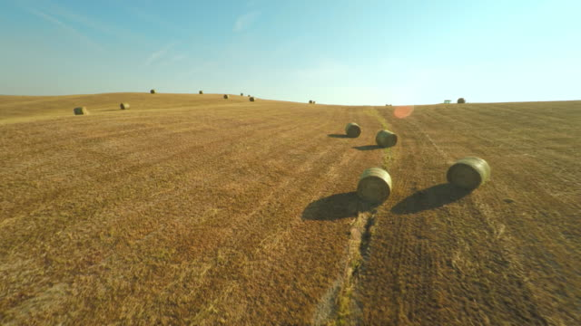 aerial bales in countryside of tuscany - bale stock videos & royalty-free footage